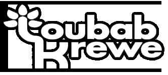 Toubab Krewe Logo